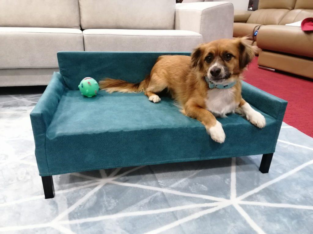 sofa-mascotas-azul
